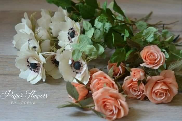 anemona miniroza